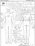 autopsy 15